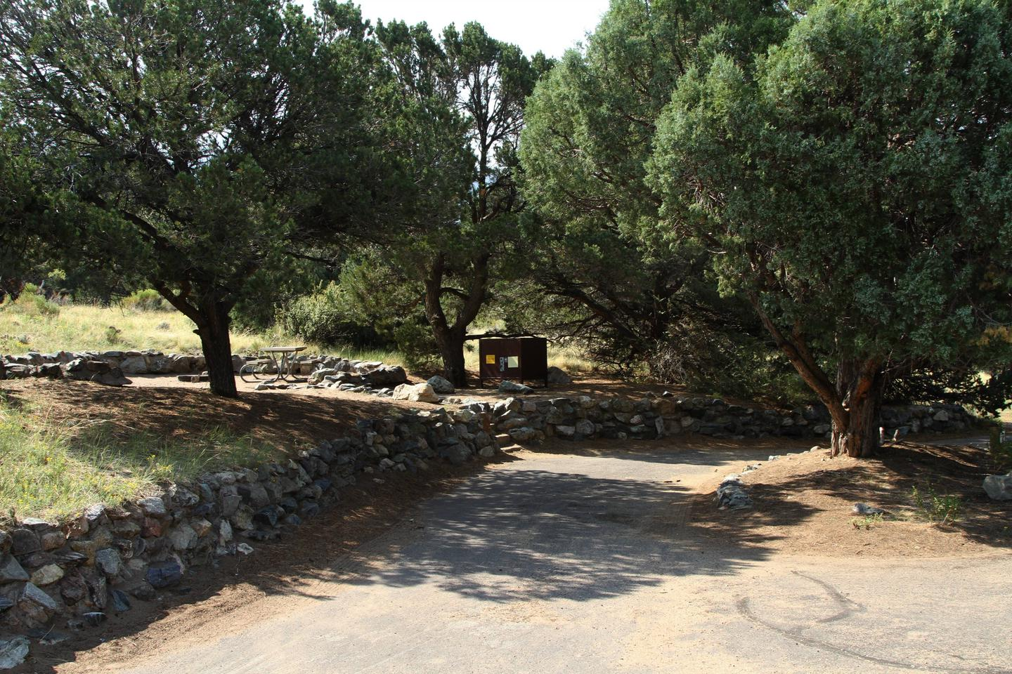 Site #60, Pinon Flats Campground