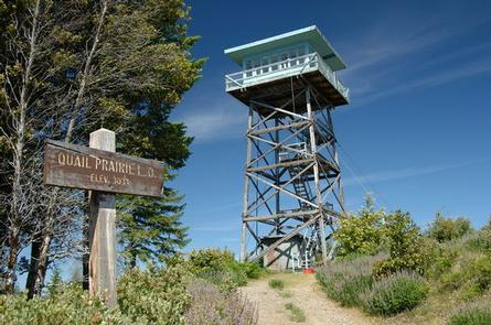 Lookout tower from below with sign in foreground and blue sky in the background.QUAIL PRAIRIE LOOKOUT