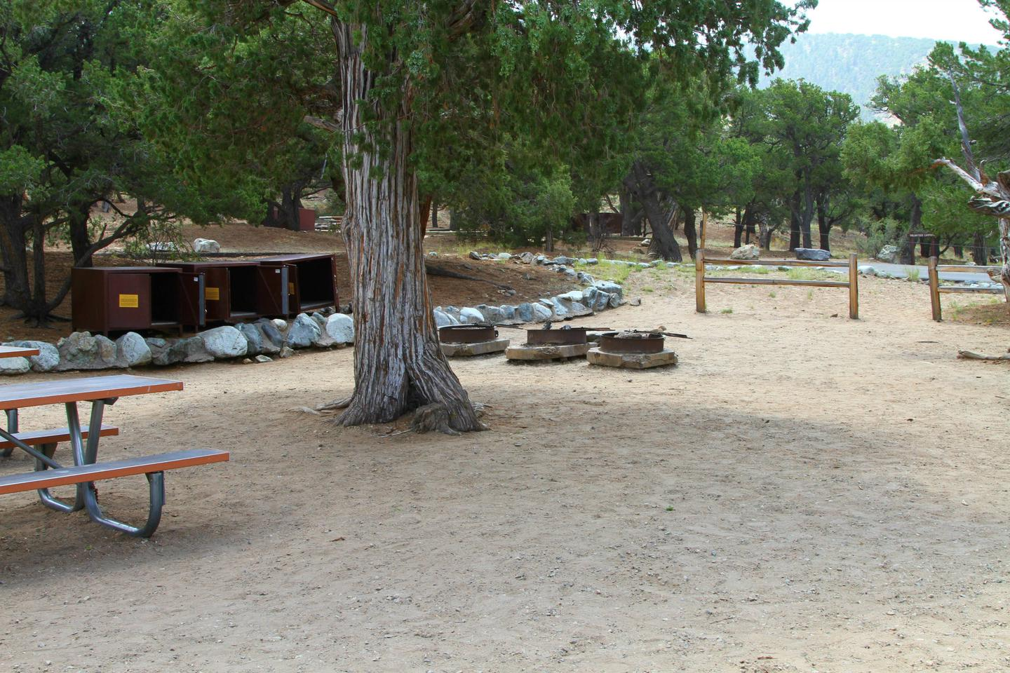 Group Site A, Pinon Flats Campground
