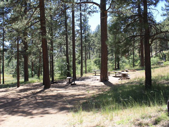 Hollyhock Group Campsite
