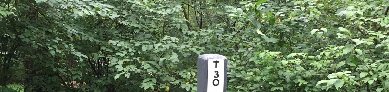T Loop Site 30 - RV Nonelectric