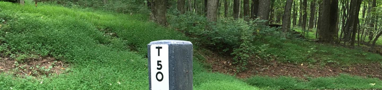 T Loop Site 50 - RV Nonelectric