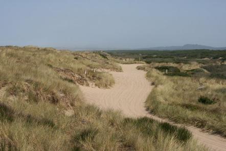 Sandy OHV trail through grass covered dunes under hazy blue sky.HORSFALL BEACH