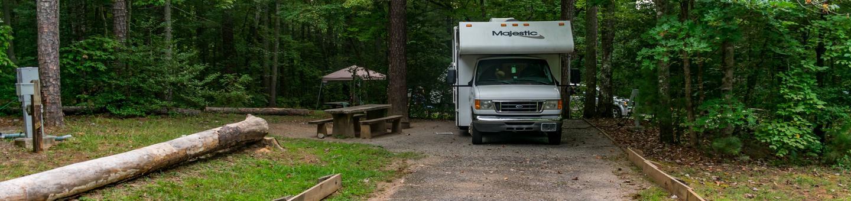 Lake Powhatan, Big John loop #1Lake Powhatan, Big John loop, Campsite #1