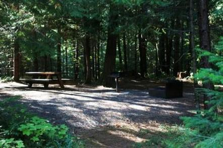 Campsite in forest with picnic table in dappled sun and grill and fire pit in shade.Deer Flat Group Site in Horseshoe Bend Campground
