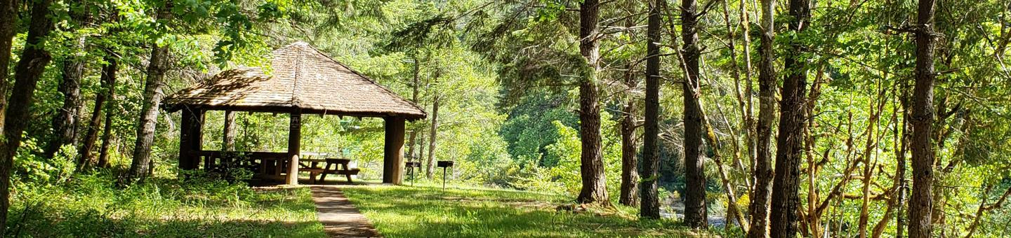 Group Picnic Shelter in sunlit glade of forested creek bank.Canton Creek Picnic Shelter
