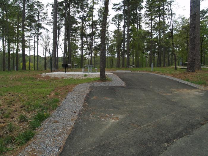 South Abutment Campground Site 41