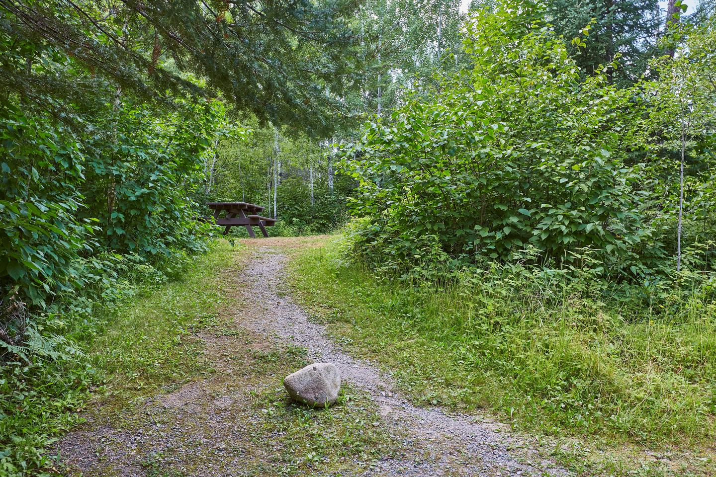 Path to CampPath to camp