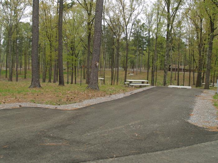 South Abutment Campground Site 67