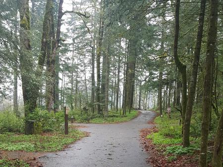 Eagle Creek Campground | Recreation gov