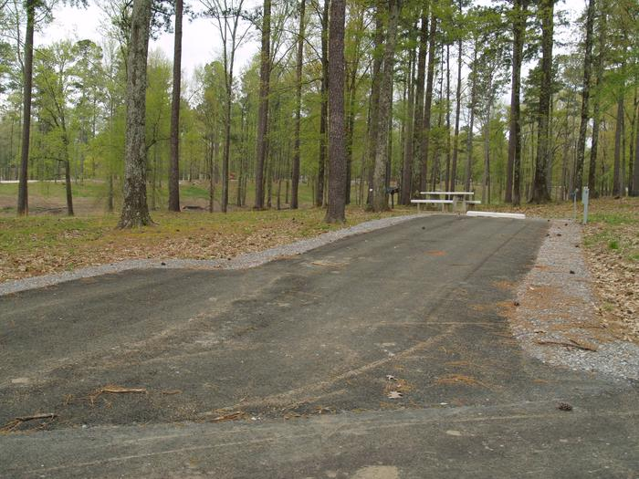 South Abutment Campground Site 73