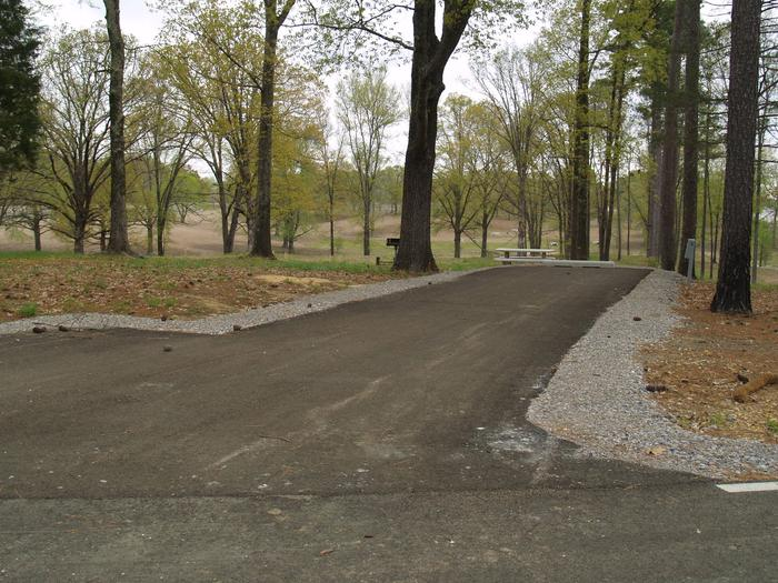 South Abutment Campground Site 79