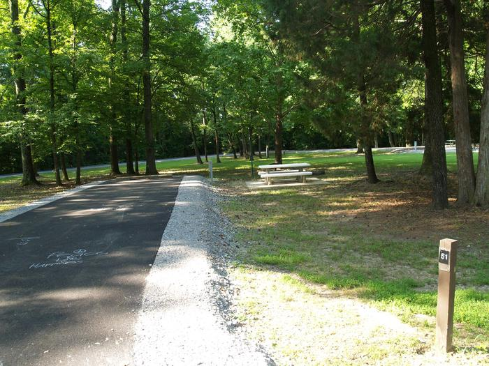 Hernando Point Campground Site 51