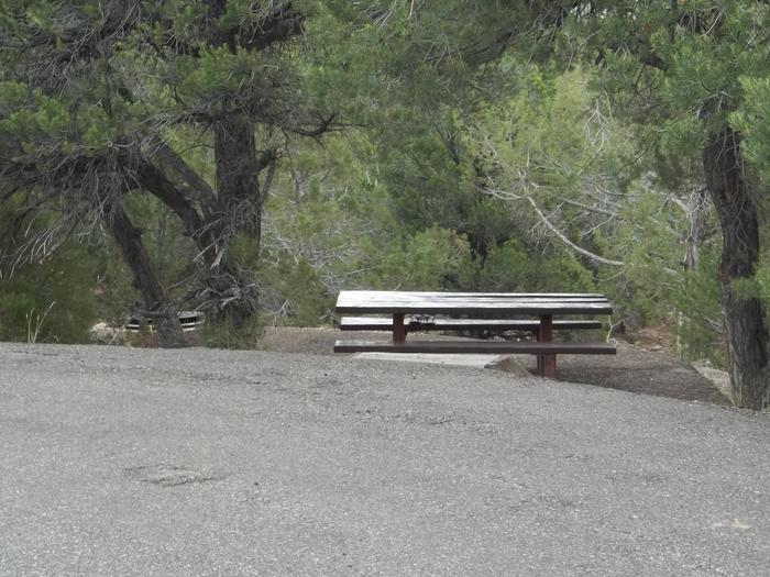 This site has a picnic table and fire pit that is found down the hill from the parking area.Cedar Springs Campground: Site 4