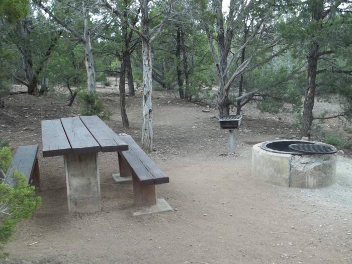 This site has a picnic table, fire pit and grill nestled in the trees with no grasses in the area.Cedar Springs Campground: Site 5