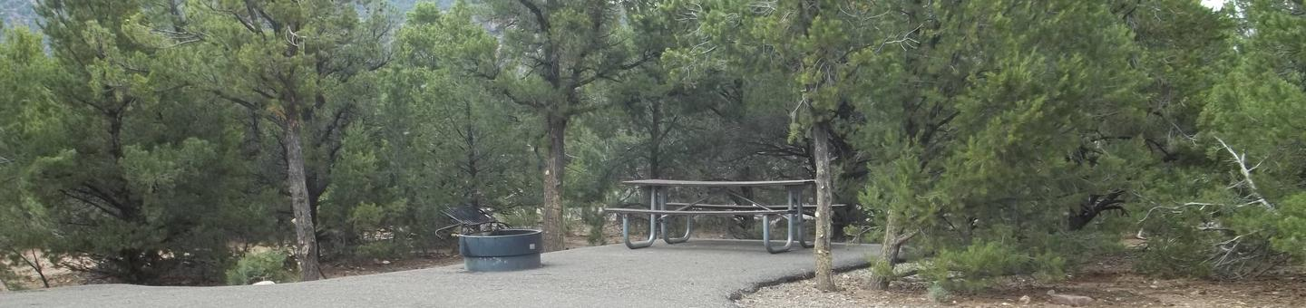 This site has a picnic table and fire pit that is on asphalt to the side of the adjoining parking area.Cedar Springs Campground: Site 7