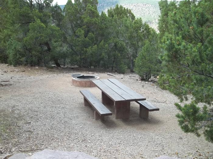 This site has a picnic table and fire pit in a gravel area with trees surrounding. To the edge of the site you can look down into a canyon.Cedar Springs Campground: Site 9