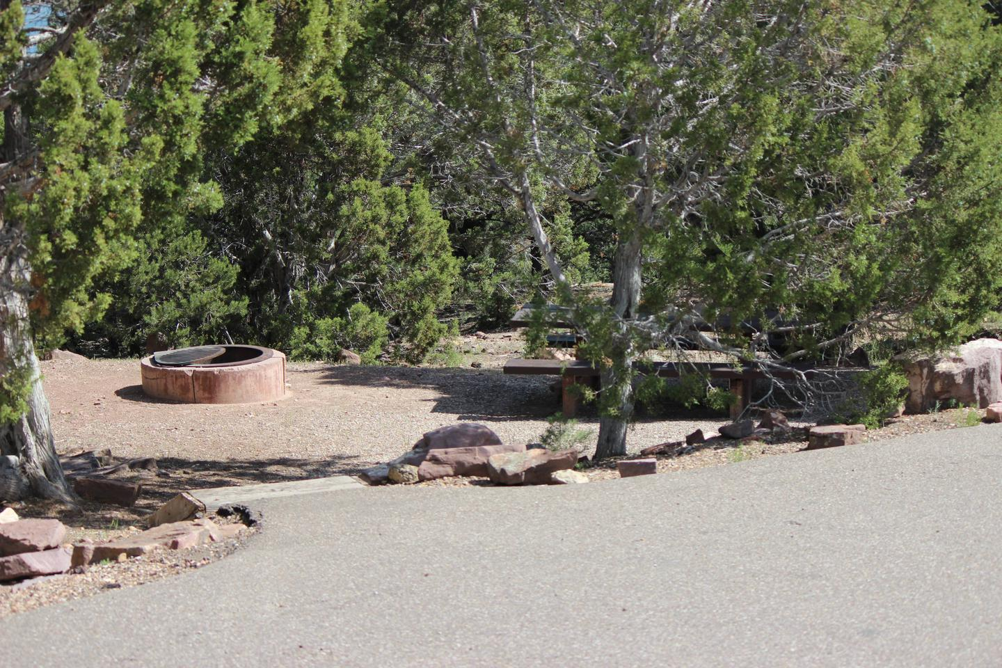 The picnic table and fire pit are located in a gravel area. There are steps going down to the picnic area from the parking area.Cedar Springs Campground: Site 9