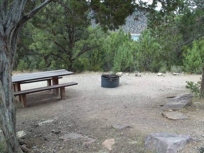 The picnic and fire pit are in a gravel area nestled in the trees. A large body of water can be seen in the distance.Cedar Springs Campground: Site 10