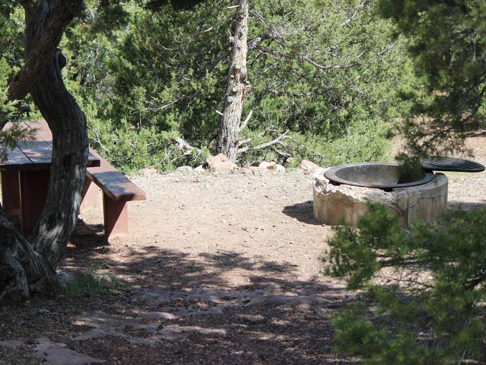 This site has a picnic table and a fire pit with a grill grate that is located in a wooded area. Cedar Springs Campground: Site 12