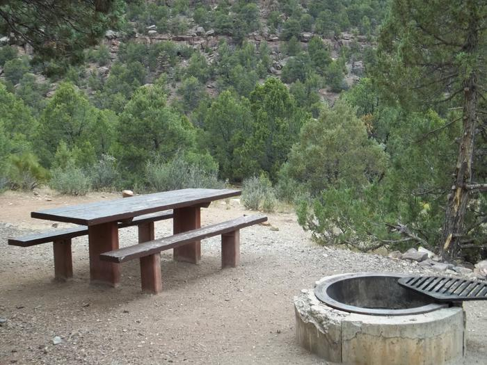 The picnic table and fire pit are found in a gravel area within the trees. The edge of the site allows you to look out over the land.Cedar Springs Campground: Site 12