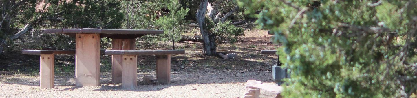 This site has a picnic table that is located in the trees.Cedar Springs Campground: Site 13