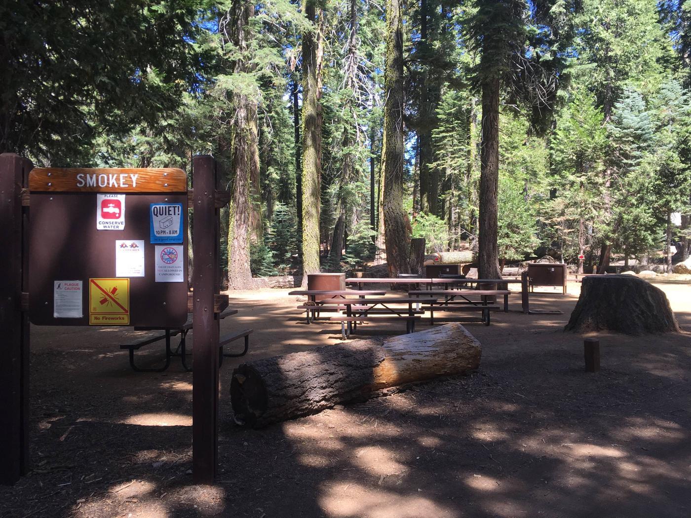 Smokey Campsite