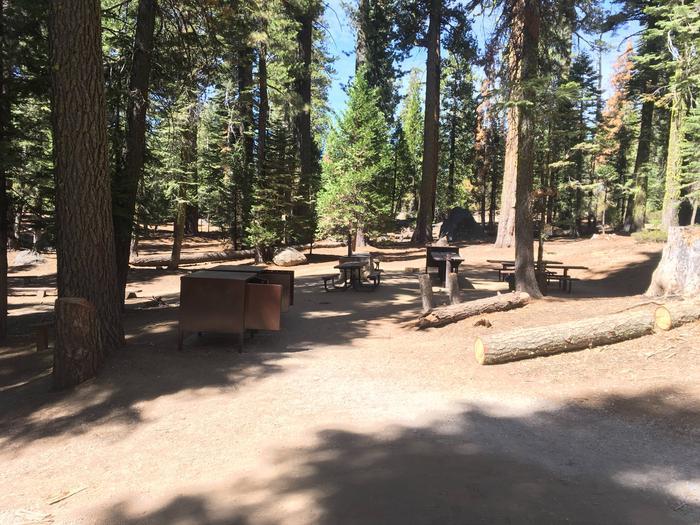 Chipmunk Campsite