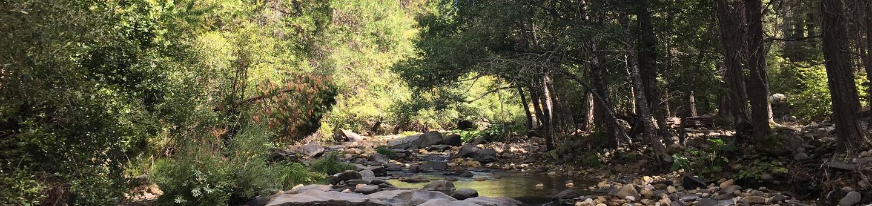 River AccessCosumnes River