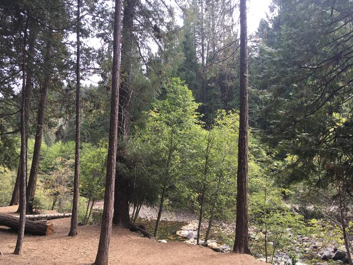 Preview photo of Pipi Campground