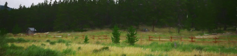 doyle_cg_heroDoyle Creek Site 10