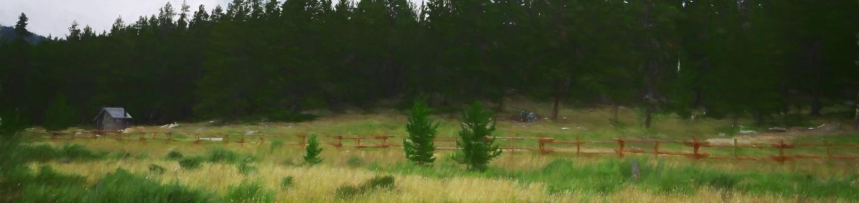 doyle_cg_heroDoyle Creek Site 13