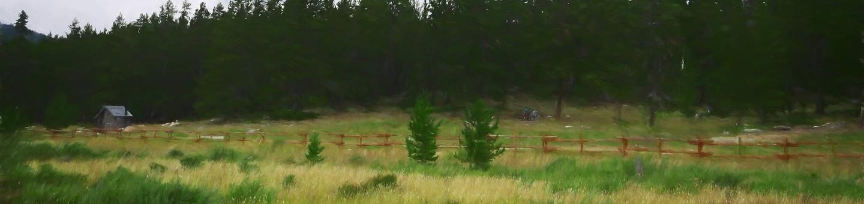 doyle_cg_heroDoyle Creek Site 18