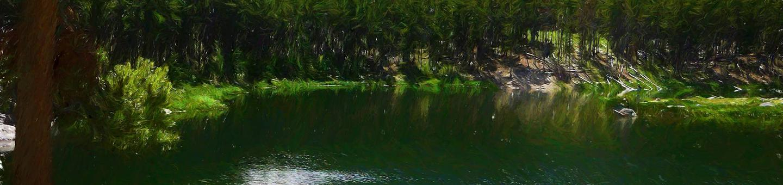 gl_cg_heroGreenough Lake Site 2