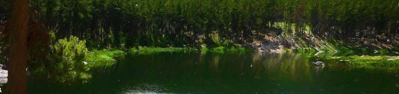 gl_cg_heroGreenough Lake Site 4