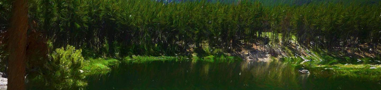 gl_cg_heroGreenough Lake Site 8
