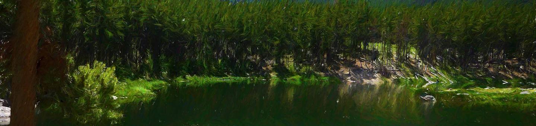 gl_cg_heroGreenough Lake Site 9