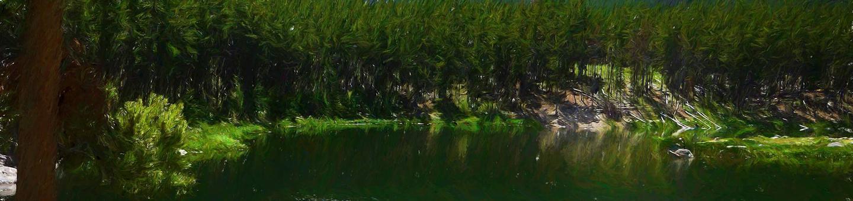 gl_cg_heroGreenough Lake Site 10