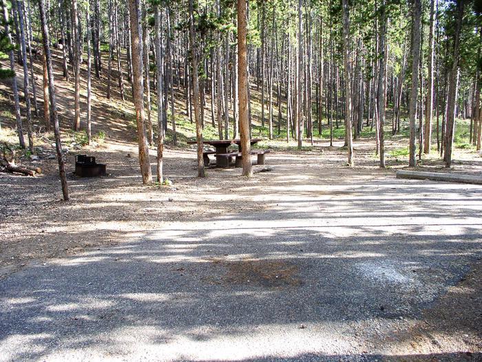 gl_site11_preivewGreenough Lake Site 11
