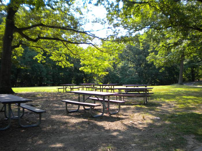 Photo of tables in Picnic Area APicnic Area A