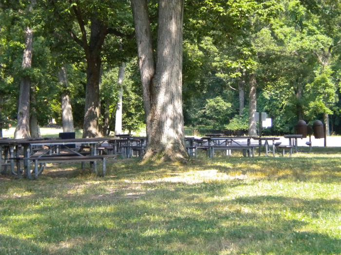 Photo picnic tables in Area B2Picnic Area B2, is close the the parking lot and the small playground