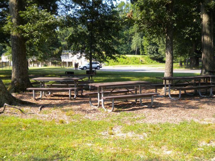 Photo of Picnic tables in Area B3Picnic Area B3