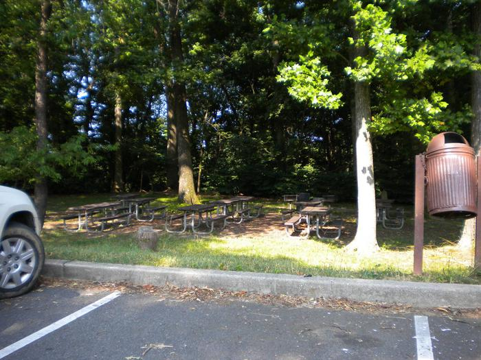 Photo of Picnic Area D2 with tables and parking lot.Area D2 is the other small area, it is close to the parking lot