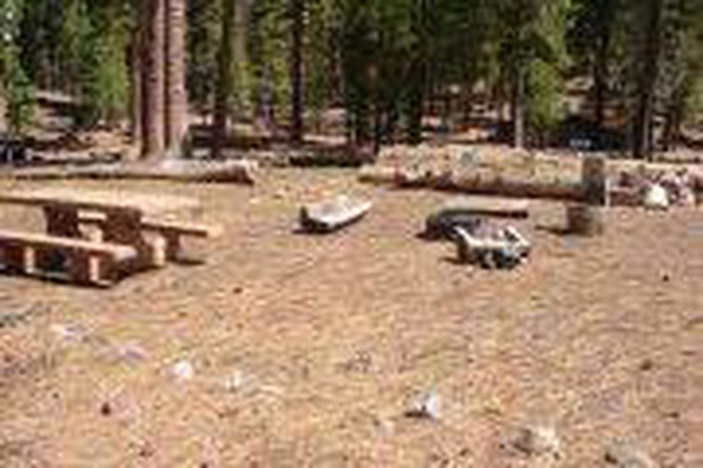Butte Lake Campground, Lassen Volcanic National ParkSite, Loop: B02, Loop B