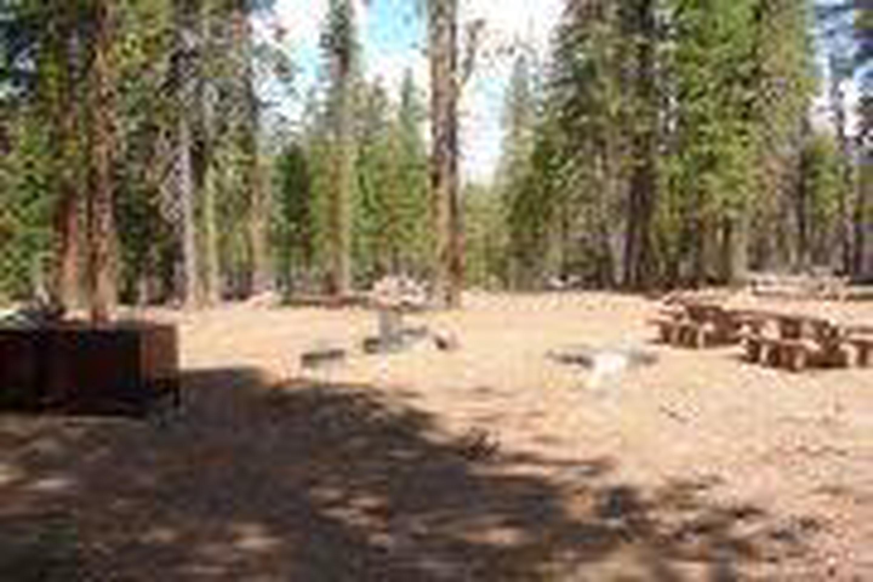 Group Site 4Lost Creek Group Site 4