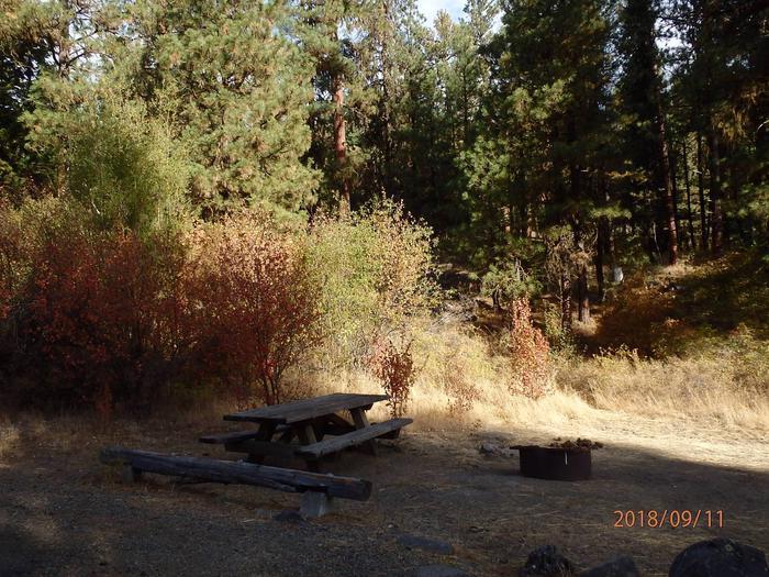 Hause Creek CampgroundCampsite 5