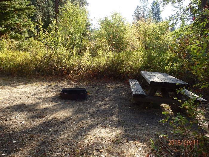 Hause Creek CampgroundCampsite 7