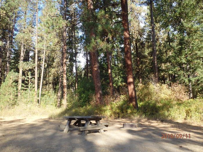 Hause Creek CampgroundCampsite 8