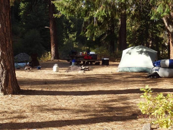 Hause Creek CampgroundCampsite 10