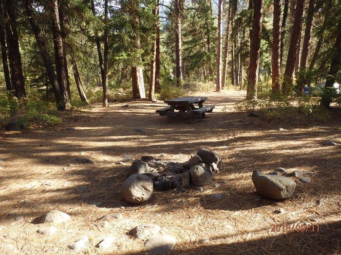 Hause Creek CampgroundCampsite 11